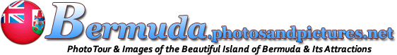 Bermuda Picture Gallery Site Banner