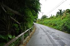 Traversing Lighthouse Road Bermuda to Gibb's Lighthouse.jpg